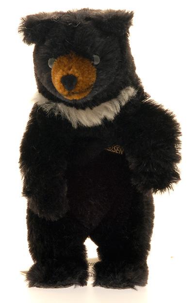 Schwarz Bär Baby